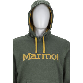 Marmot Hoody - Couche intermédiaire Homme - olive